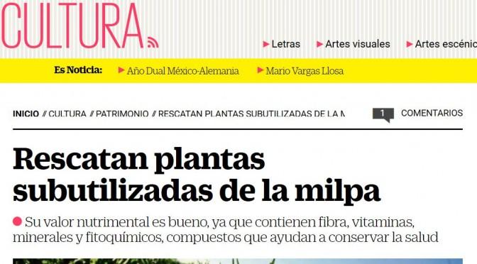 Projet 'Sauvetage des espèces sous-valorisées traditionnelles dans la diète mexicaine'