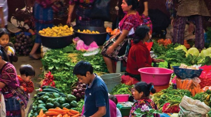 Políticas de alivio a la probeza y seguridad alimentaria